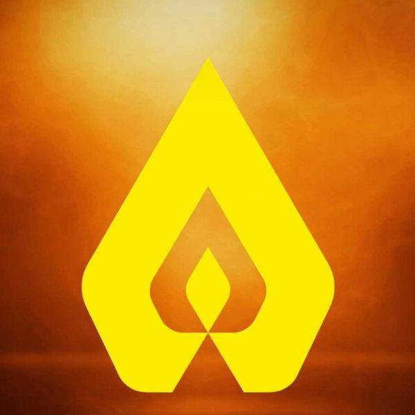 Premium Professional Custom Logo Animation