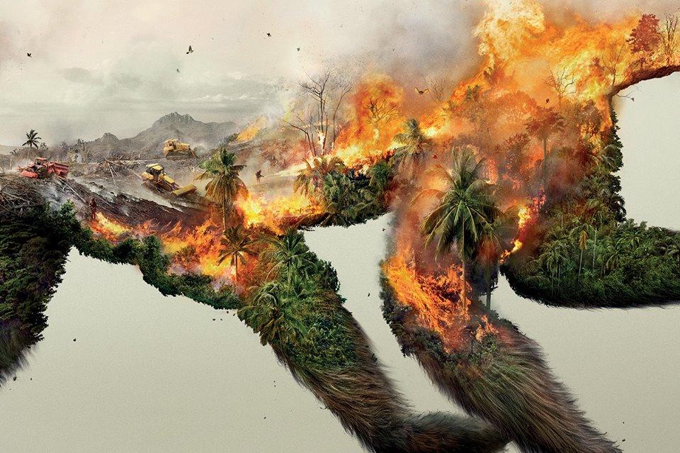 Destruir la naturaleza es destruir la vida5