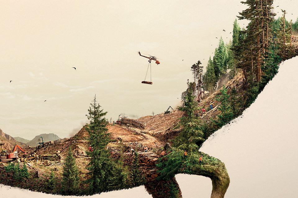Destruir la naturaleza es destruir la vida6